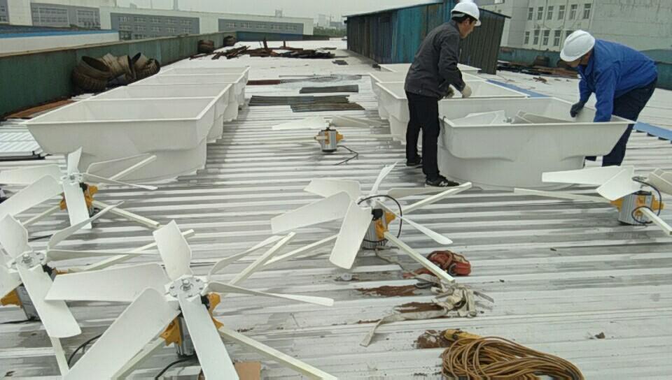 玻璃钢负压风机房顶工程安装实例